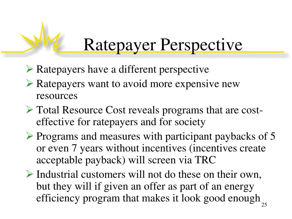 Ratepayer Perspective