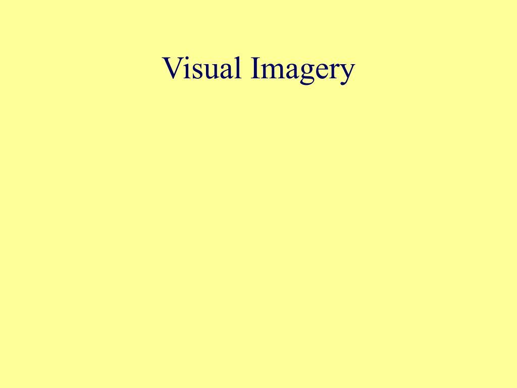 Visual Imagery
