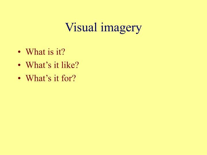 Visual imagery2