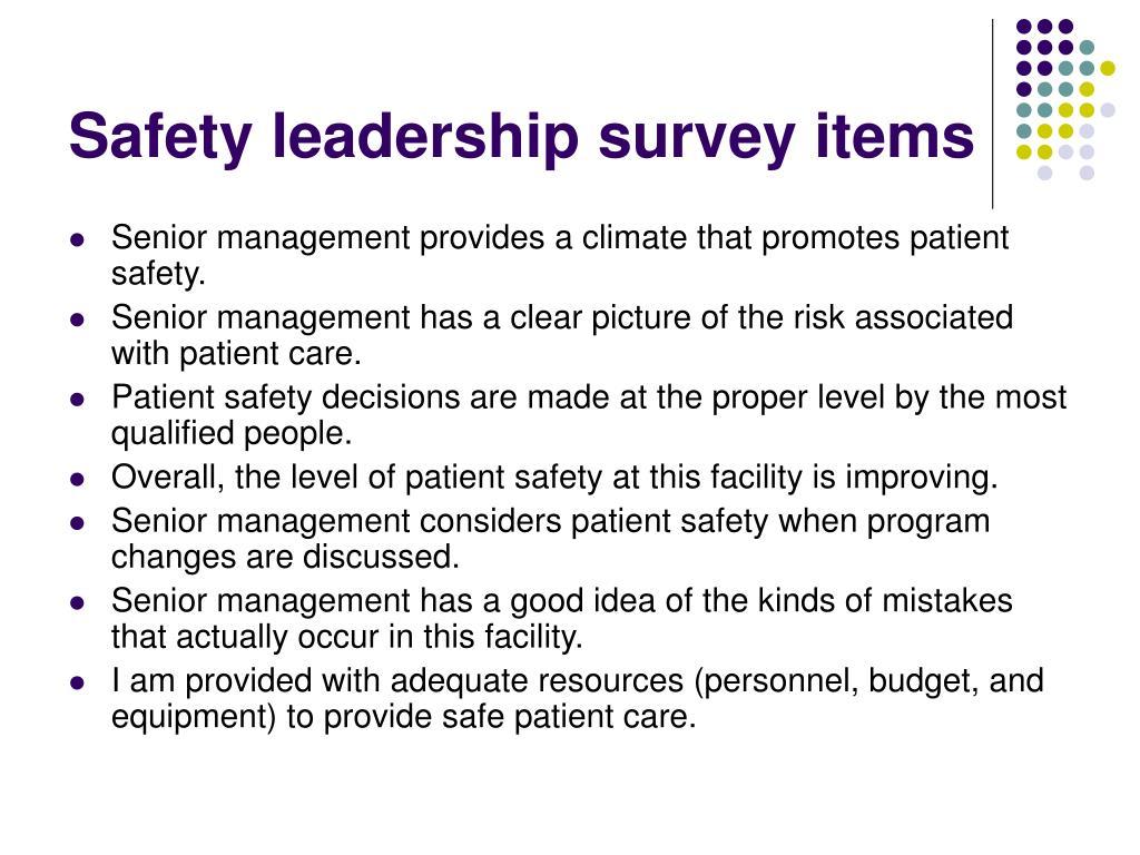 Safety leadership survey items