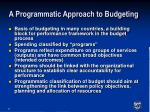 a programmatic approach to budgeting