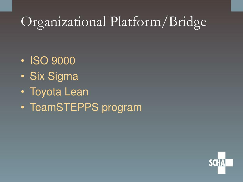 Organizational Platform/Bridge