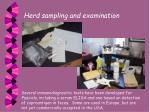 herd sampling and examination