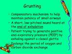 grunting
