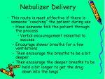 nebulizer delivery