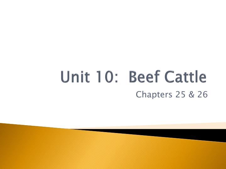 unit 10 beef cattle n.