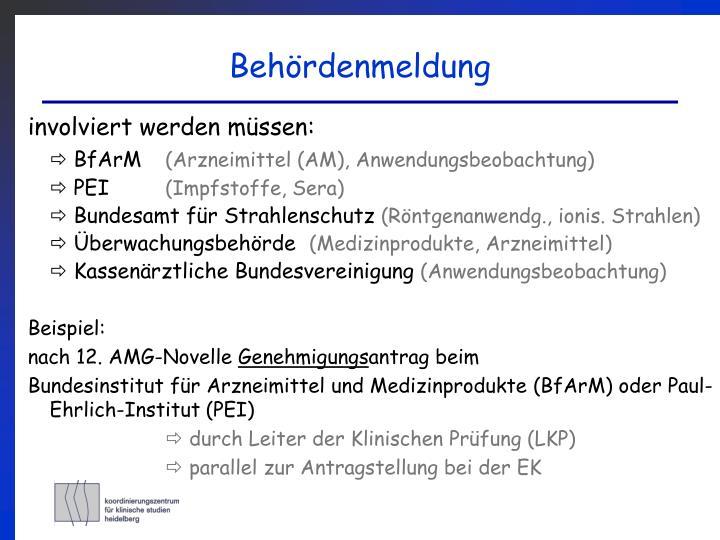 PPT - Workshop Klinische Studien: Verantwortlichkeiten eines ...