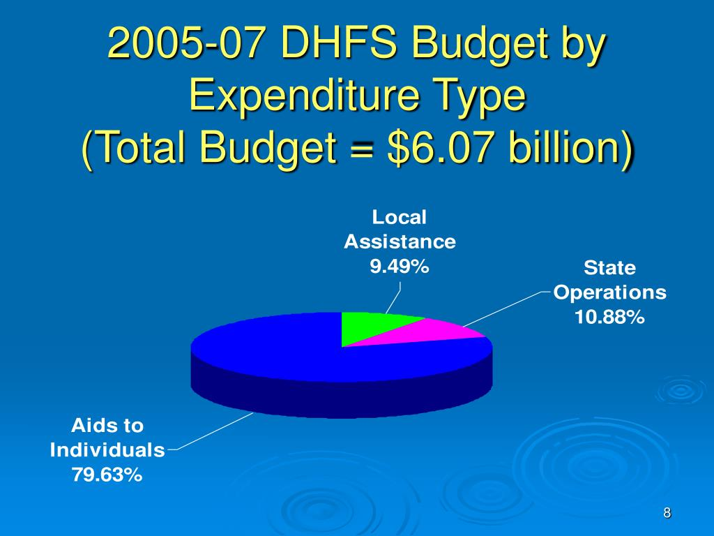 2005-07 DHFS Budget by Expenditure Type