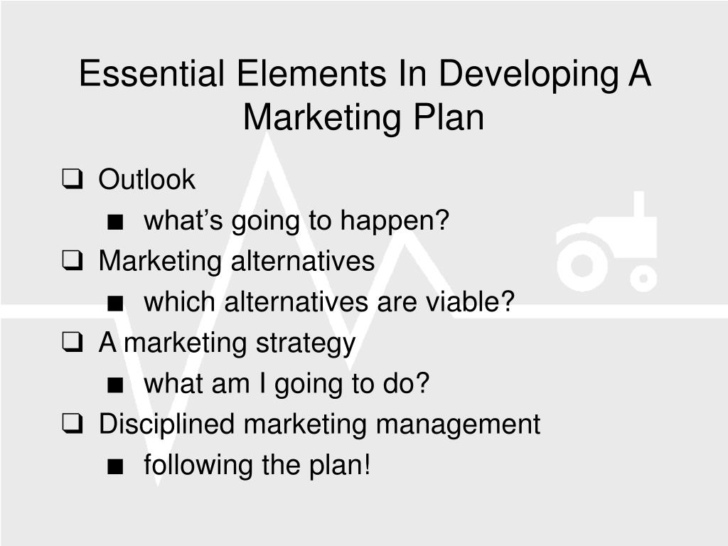 Essential Elements In Developing A Marketing Plan