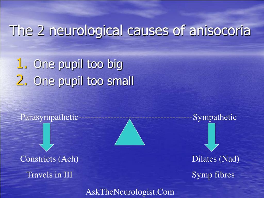 The 2 neurological causes of anisocoria