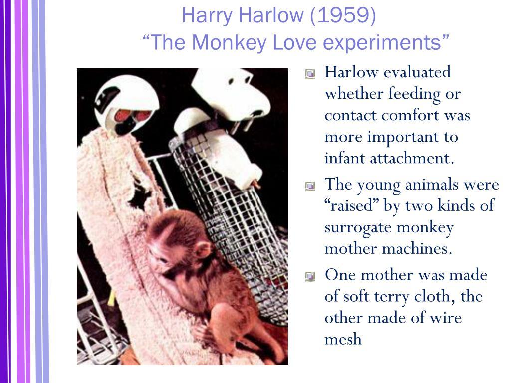 Harry Harlow (1959)