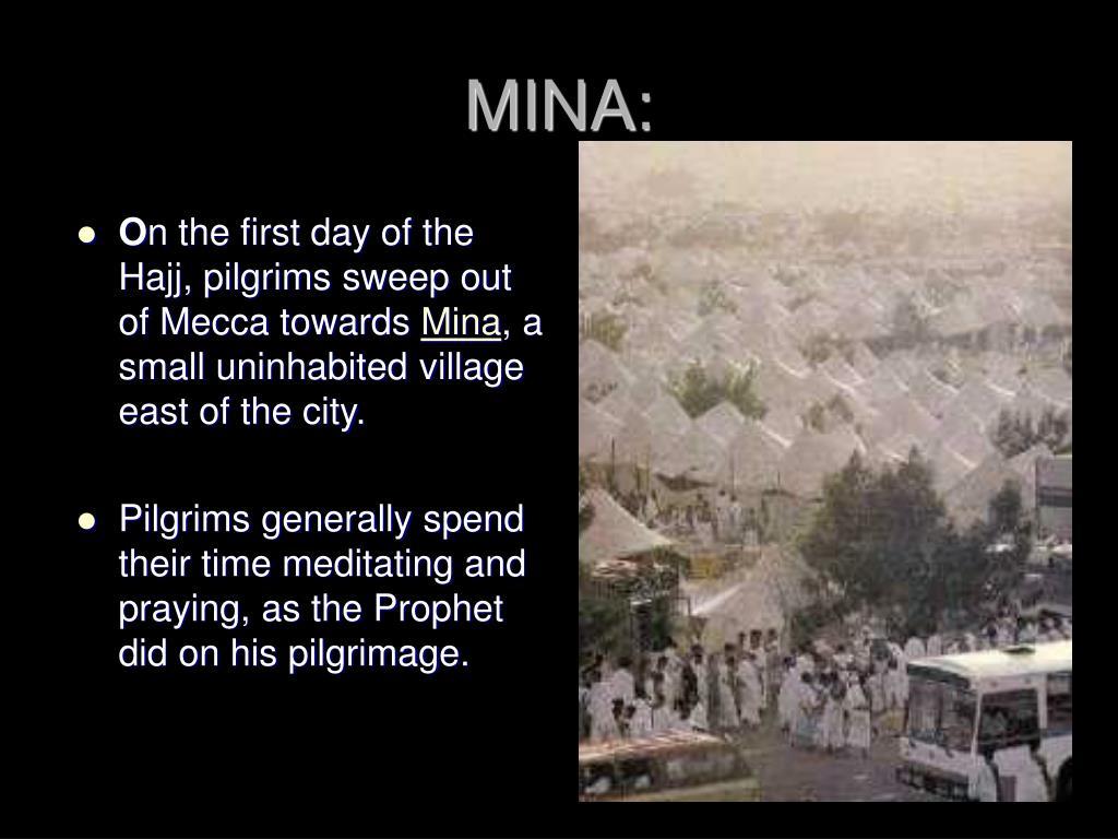 MINA: