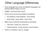 other language differences