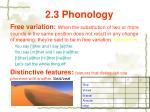 2 3 phonology29