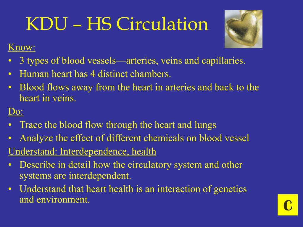 KDU – HS Circulation