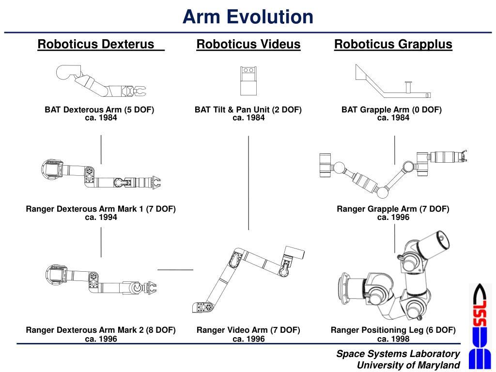Arm Evolution