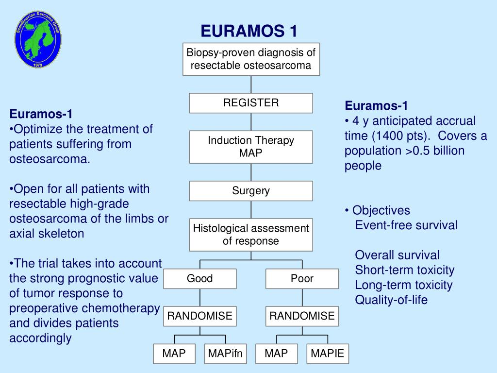 EURAMOS 1