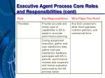 executive agent process core roles and responsibilities cont