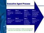 executive agent process
