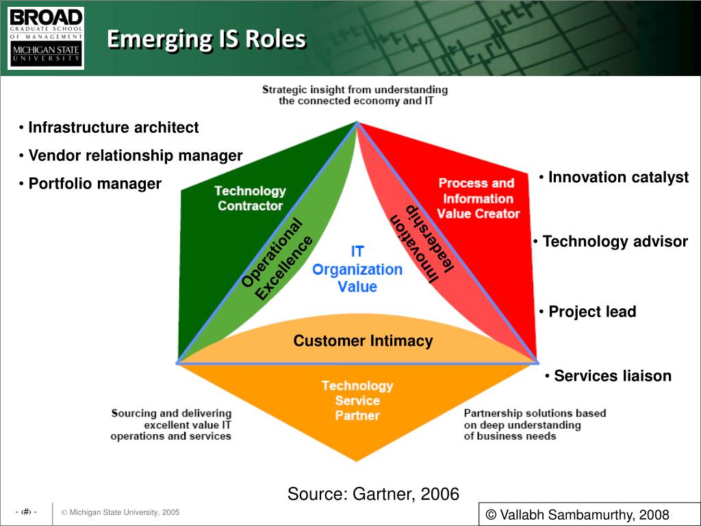 Emerging IS Roles