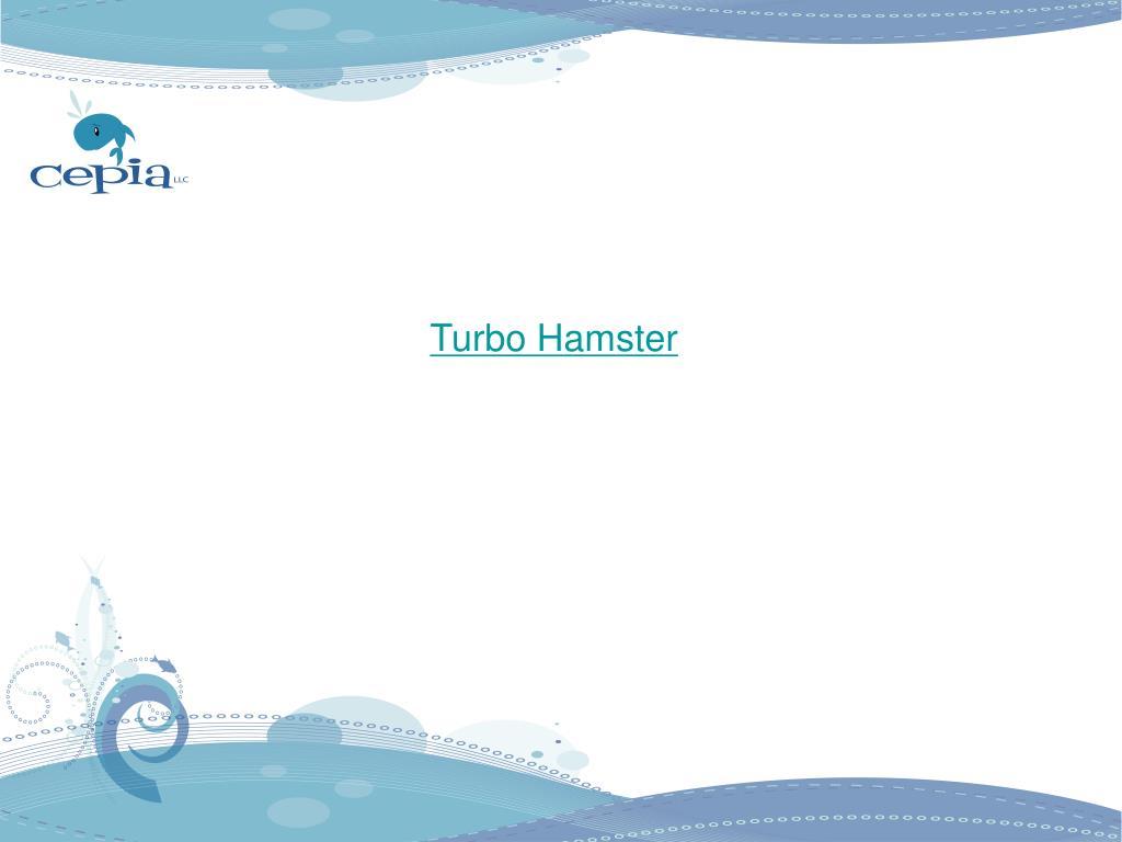 Turbo Hamster