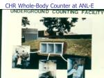 chr whole body counter at anl e