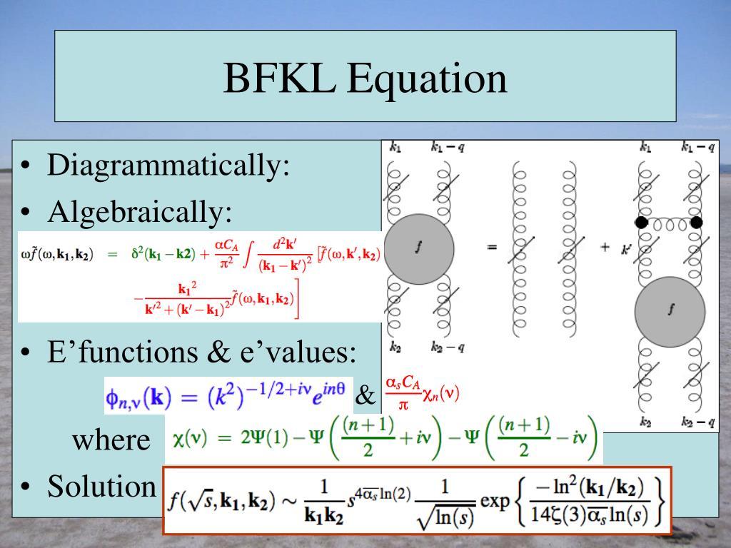 BFKL Equation