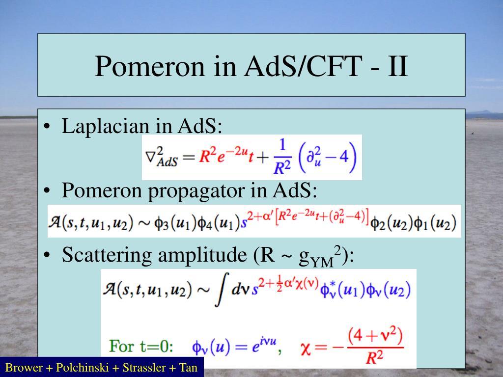 Pomeron in AdS/CFT - II