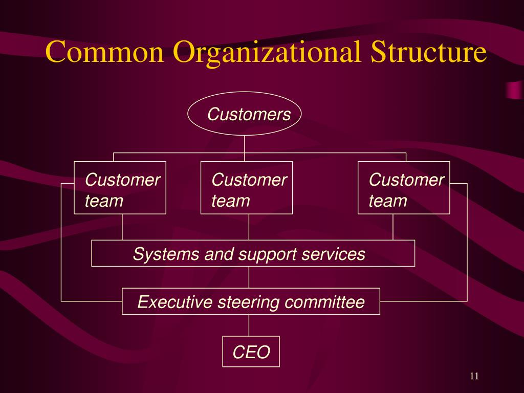 Common Organizational Structure