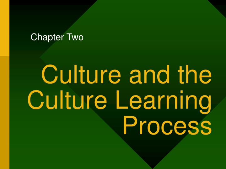 culture and the culture learning process n.