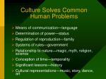 culture solves common human problems