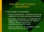 how we learn culture socialization