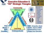 executive education gv strategic triangles