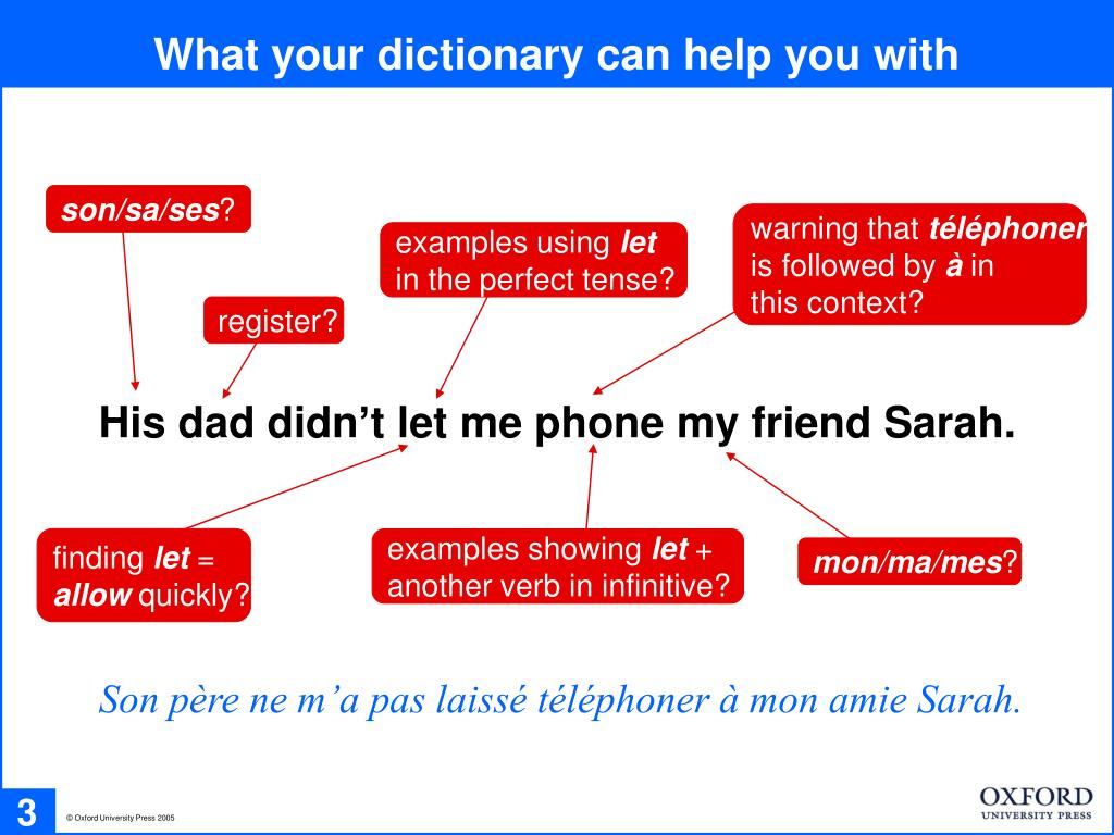 What your dictionary can help you with