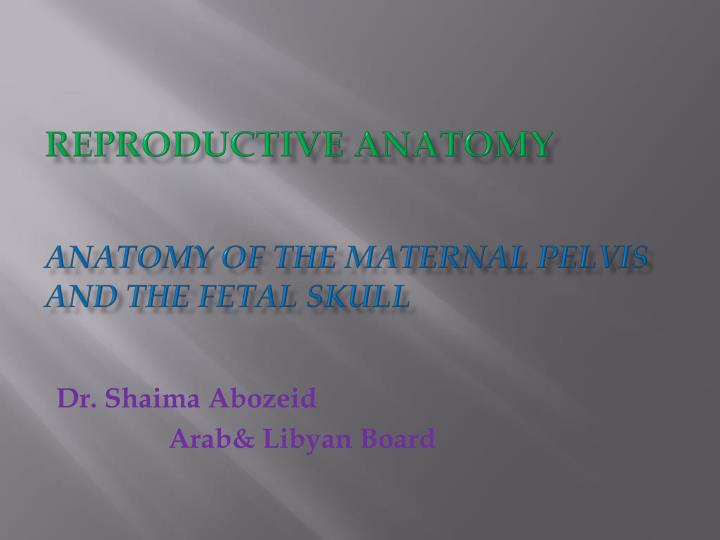reproductive anatomy anatomy of the maternal pelvis and the fetal skull n.