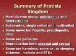summary of protista kingdom
