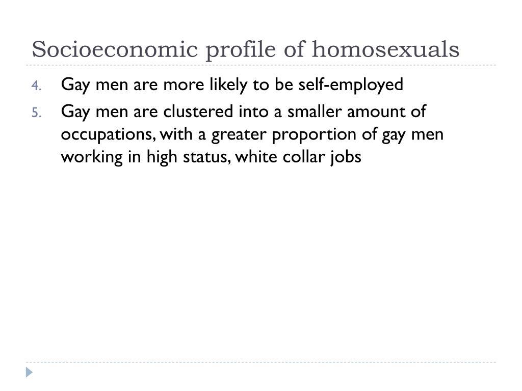 Socioeconomic profile of homosexuals