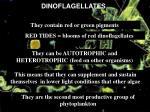 dinoflagellates15
