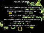 plankton size
