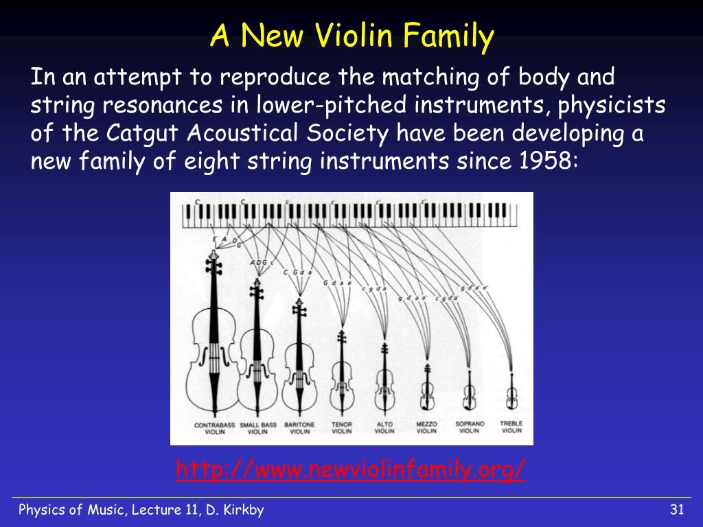 A New Violin Family
