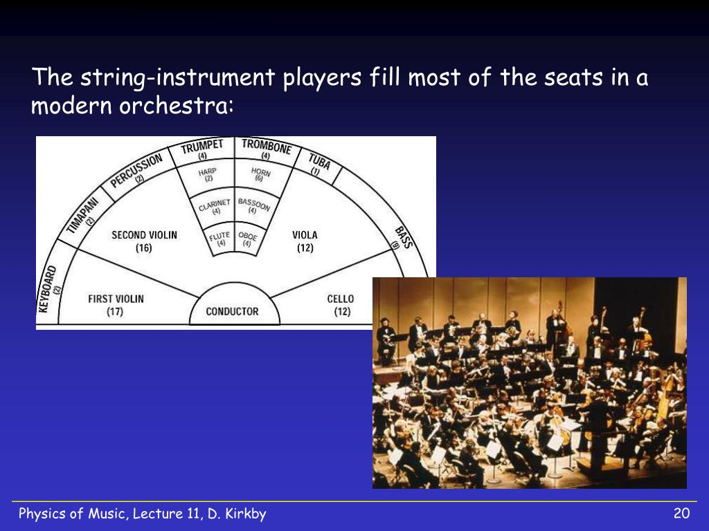 The string-instrument players fill most of the seats in a modern orchestra: