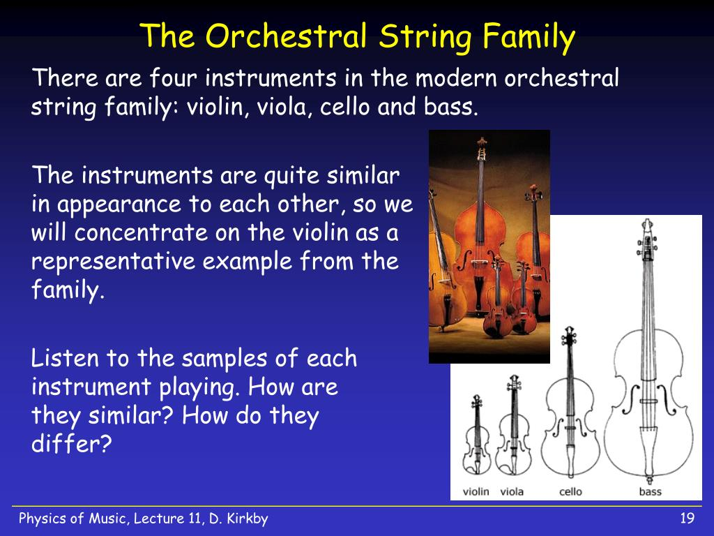 The Orchestral String Family
