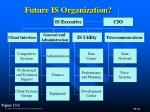 future is organization