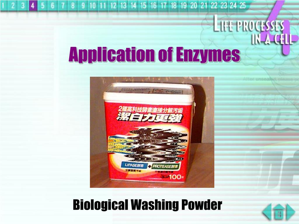 Application of Enzymes