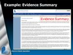 example evidence summary