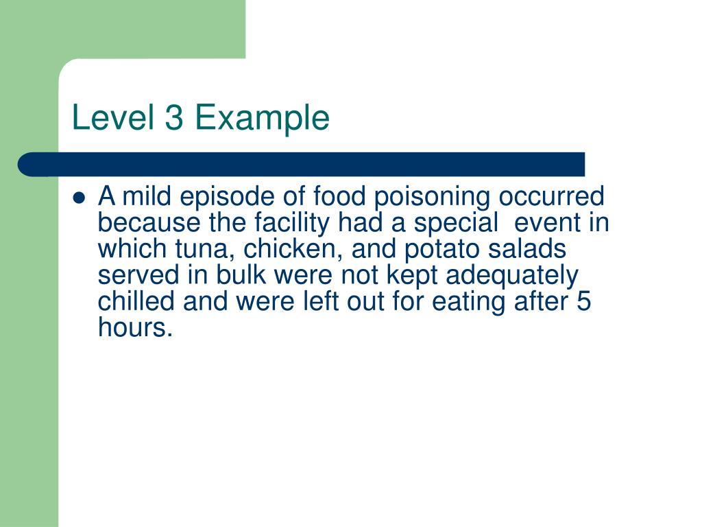 Level 3 Example