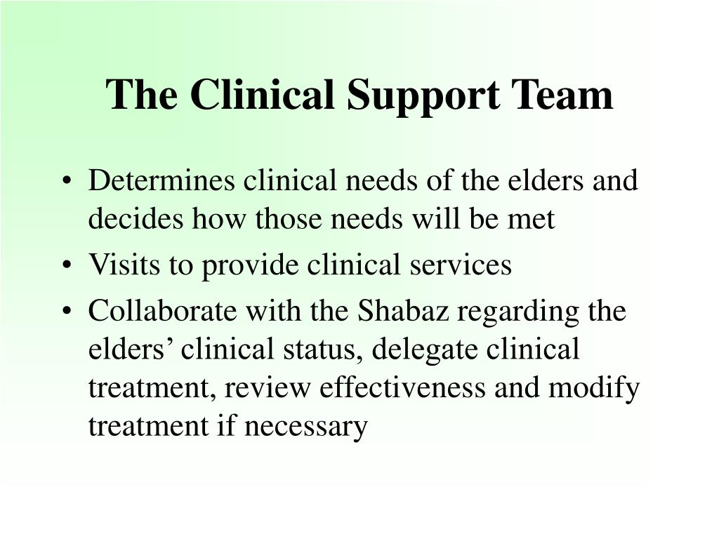The Clinical Support Team