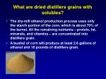 what are dried distillers grains with solubles