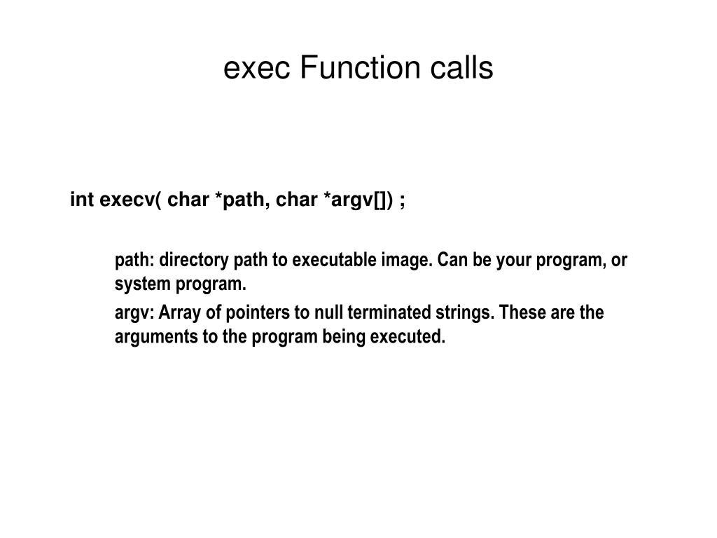 exec Function calls