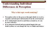 understanding individual differences perception2